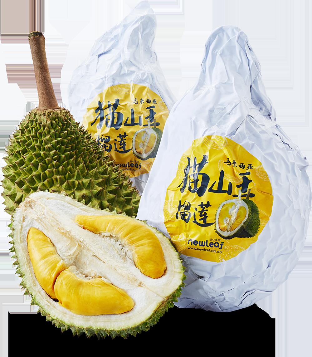 Frozen Durian Manufacturer & Processing