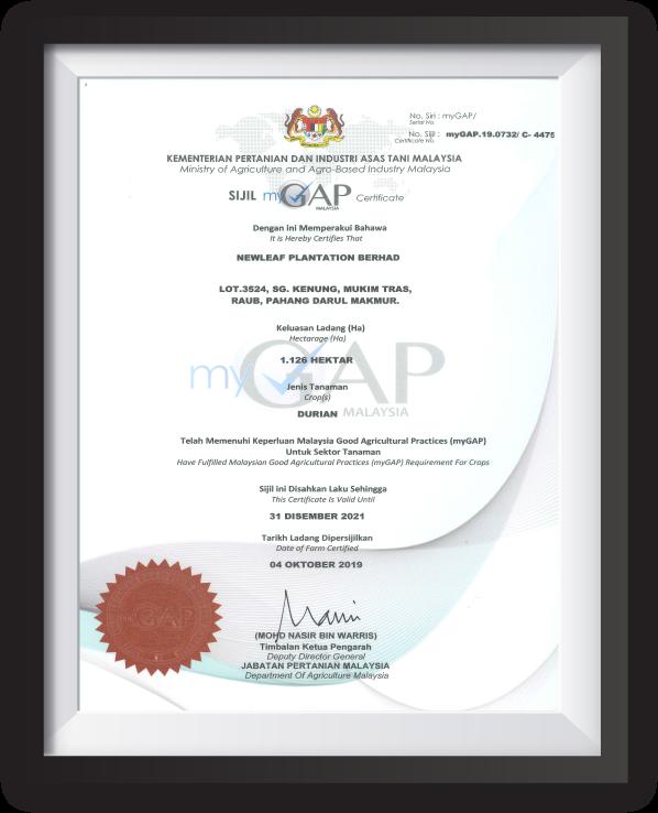 MyGap certified