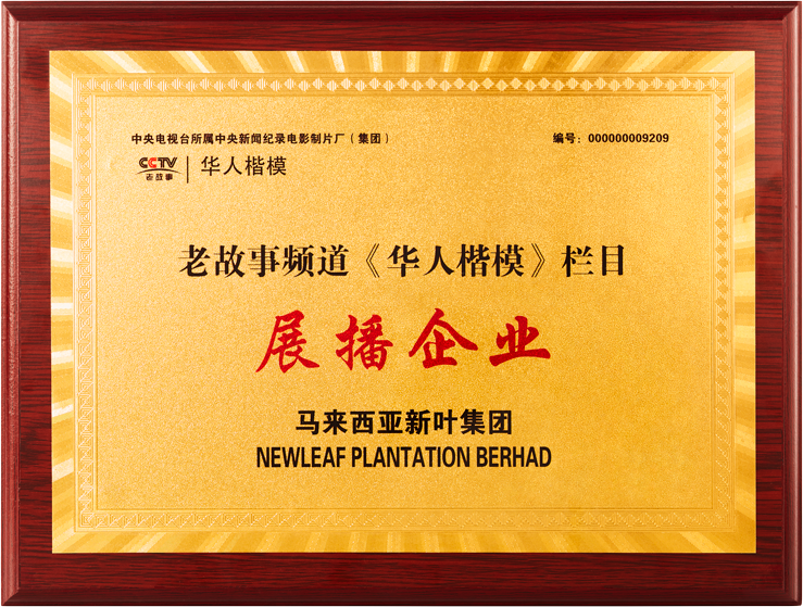 CCTV overseas chinese role model 2019