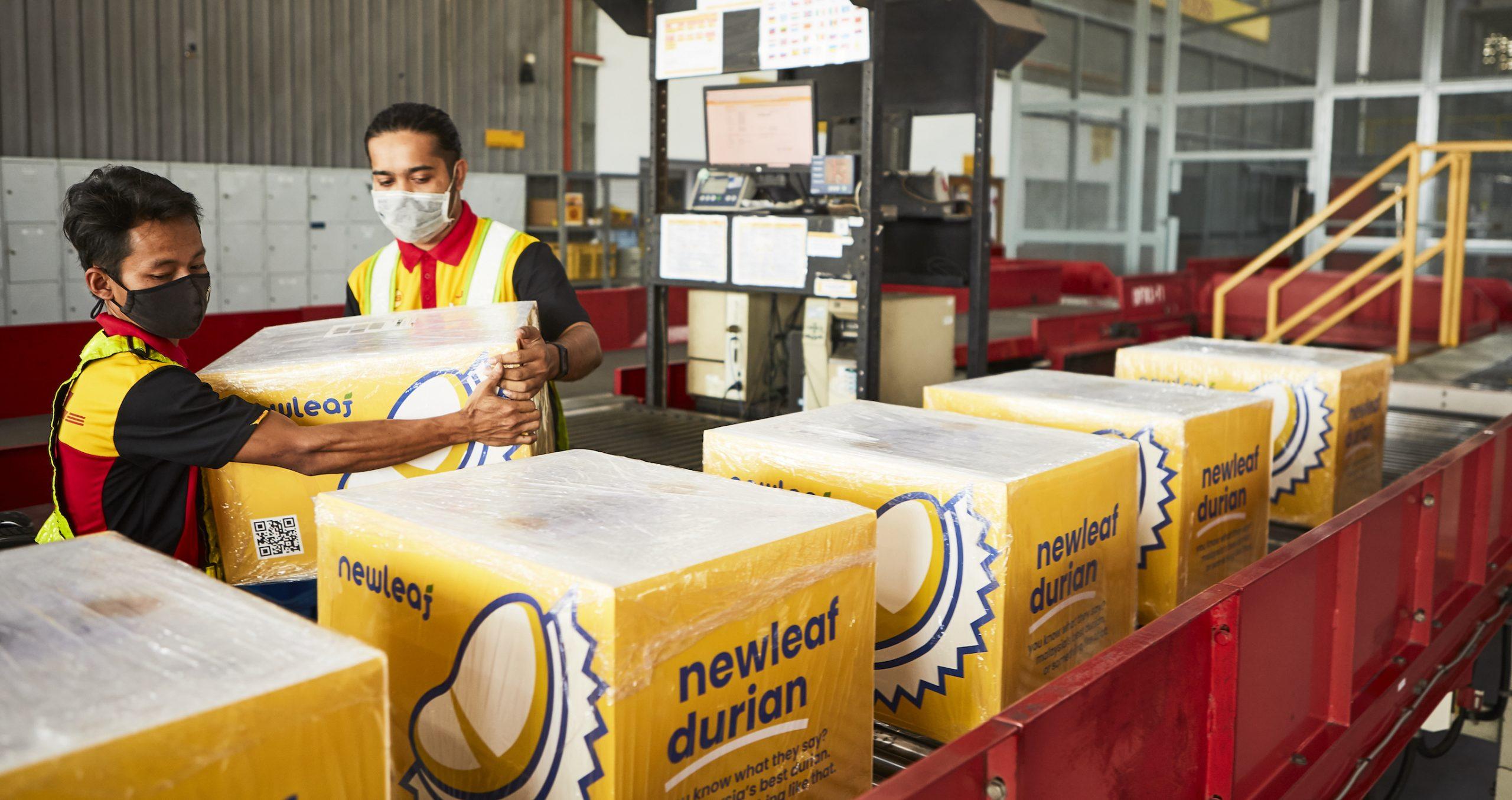 Durian Manufacturer Malaysia